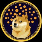 Bonus DOGE