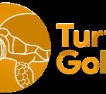 Turtle Gold